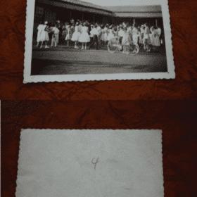 FOTO MARINGA 16921 Casa do Colecionador